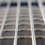 Shuker Jazz Bass - Strings