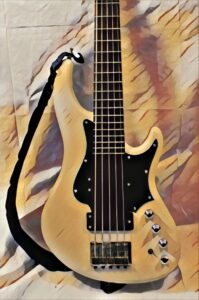 Bass Guitar - On Learning and Practice A measured approach